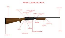Diagrama etiquetado de la escopeta Imagen de archivo