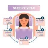 Diagrama humano saudável da ilustração do vetor do ciclo do sono com a fêmea em fases da cama e do sono Esquema infographic educa ilustração do vetor