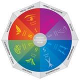 Diagrama múltiple de la teoría de las inteligencias de Gardners - rueda - entrenar la herramienta Fotografía de archivo libre de regalías