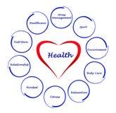 Diagramm der Gesundheit lizenzfreie abbildung