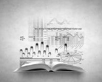 Diagramm des Einkommens Lizenzfreie Stockfotos