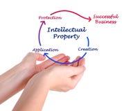 Diagramm des geistigen Eigentums Lizenzfreies Stockbild