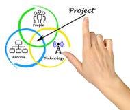 Diagramm des Projektes lizenzfreie abbildung