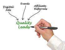 Diagramm von Qualitäts-Führungen stockbilder