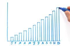 Diagramma a colonna di profitto annuale Fotografia Stock