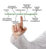 Diagramma del content management di impresa immagini stock