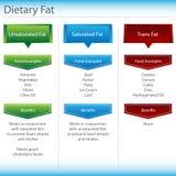 Diagramma del grasso dietetico Fotografie Stock