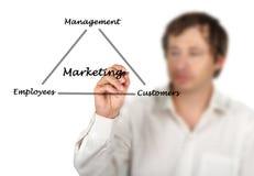 Diagramma dell'introduzione sul mercato Immagine Stock