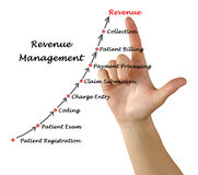 Diagramma della gestione del reddito Immagini Stock