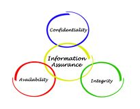 Diagramma di assicurazione di informazioni Immagine Stock Libera da Diritti