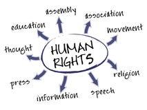 Diagramma di diritti dell'uomo Immagini Stock