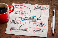 Diagramma di flusso della gestione di progetti o mindmap Immagini Stock