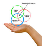Diagramma di informatica di salute Fotografia Stock Libera da Diritti