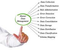 Diagramma di Master Data Management Immagine Stock