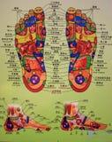 Diagramma schematico riflettente del piede Fotografia Stock