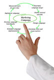 Diagramme de campagne de marketing Image stock