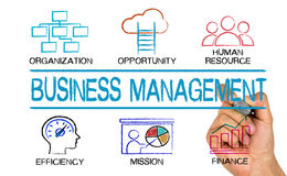 Diagramme de concept de gestion d'entreprise Photo libre de droits