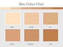 Diagramme de couleurs de la peau Photo stock