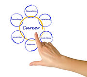 Diagramme de succès de carrière Photographie stock