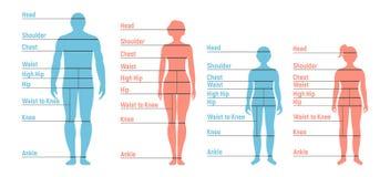 Diagramme de taille d'homme, de femme, de garçon et de fille Silhouette humaine de partie antérieure illustration libre de droits