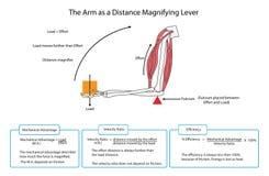 Diagramme entièrement marqué du bras comme levier de agrandissement de distance EPS10 illustration stock