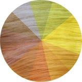 Diagramme sain coloré de cheveux Images libres de droits