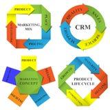 Diagrammes de vecteur du marketing Illustration de Vecteur