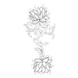 Diagrammet skissar av lotusblommor i prydnad på en vit bakgrund Arkivfoto