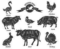 Diagrams for butcher shop. Animal silhouette, beef and cow, turkey and goose, pork and sheep. Vector illustration Stock Images