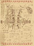 Diagramuppsättning med den mänsklig anatomihalsen och mekanism Royaltyfri Bild