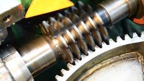 Dial gauge instrument stock video