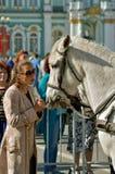 Dialog trener z koniem Obrazy Stock