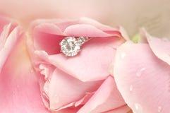 Diamant dans le pétale de Rose Image libre de droits