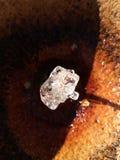 Diamant de l'eau Photographie stock