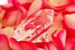 Diamant sur des pétales Image stock