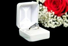 Diamantcirkel i ask Royaltyfri Bild