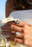 diamantcirklar Arkivbild