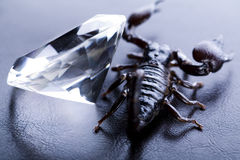 Diamante e escorpião Imagens de Stock Royalty Free
