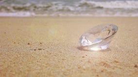 Diamante en la playa almacen de video