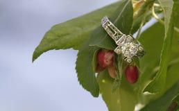 Diamantförlovningsring på blomman Royaltyfri Fotografi