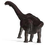 diamantinasaurus恐龙 免版税库存照片