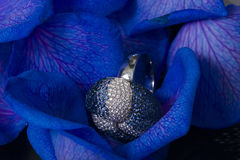 diamantpetals steg royaltyfria foton