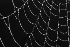Diamants au-dessus de noir Image libre de droits