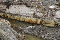 Diamataceous earth Stock Image
