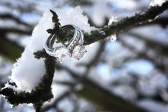 diament dzwoni sceny zima Zdjęcie Stock