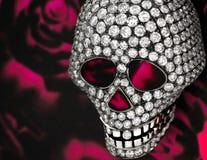 diamentowa czaszka Obraz Royalty Free