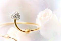 Diamentowy bangle na róży tle Zdjęcie Stock