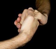 Diami la mano dell'ha Immagini Stock Libere da Diritti