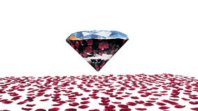 Diamond attracting rose petals, camera rotating, against white, stock footage stock video footage