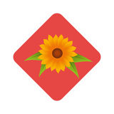 Diamond border with sunflower and leaves Royalty Free Stock Photography